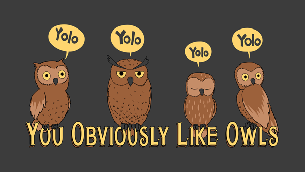 YOLO = You Obviously Like Owls.