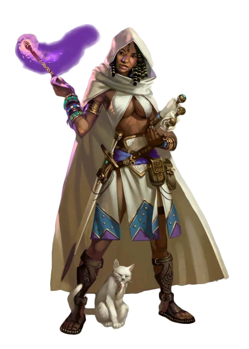 N-Com Wizard