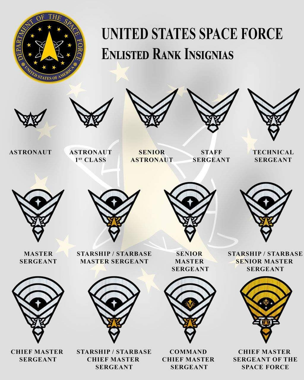 Us Space Force Rank System Military Ranks Military Insignia