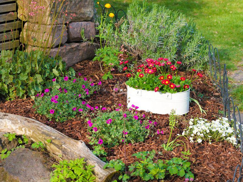 17 Gartengestaltung Mit Wurzeln Garten Gestaltung Gartengestaltung Gartenstuhl Kinder Geniale Tricks Ideen Mein Gart Garten Gartengestaltung Zen Garten