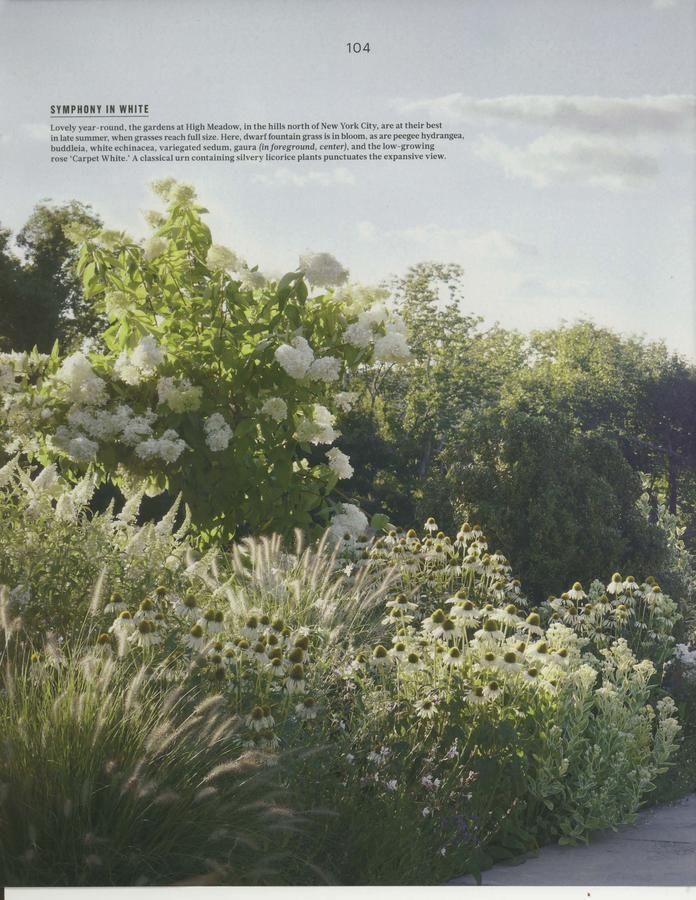 Pin On Beautiful Amp Inspirational Gardens