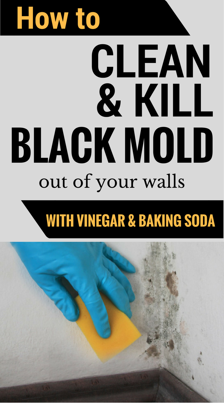 How To Clean Kill Mold Off Your Walls With Vinegar And Baking Soda - Bathroom mold killer