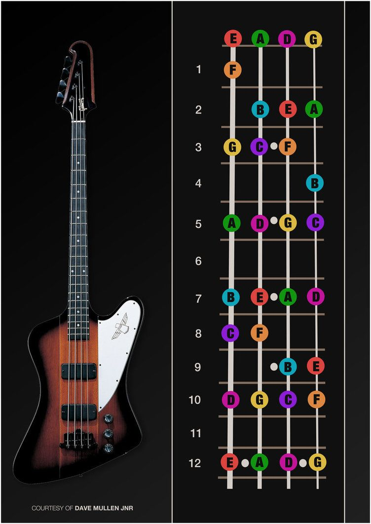 Bass Guitar Notes Poster By Davemullenjnr Music Pinterest Beginner How To Read Chord Diagram D