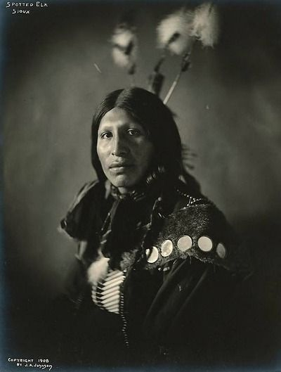Spotted Elk, Sioux. - 1908.In honor of the indigenous people of North America who have influenced our indigenous medicine and spirituality by virtue of their being a member of a tribe from the Western Region through the Plains including the beginning of time until tomorrow
