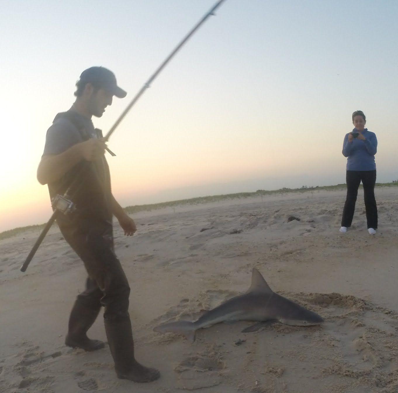Awesome Shark Surf Fishing Video Jones Beach Ny Shark Fishing Fishing Videos Saltwater Fishing