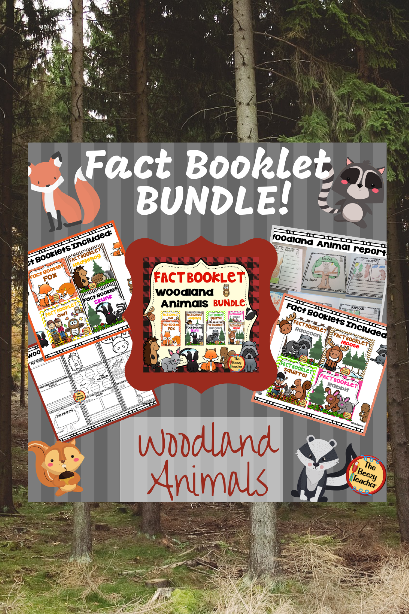 Woodland Animals Fact Booklet Bundle