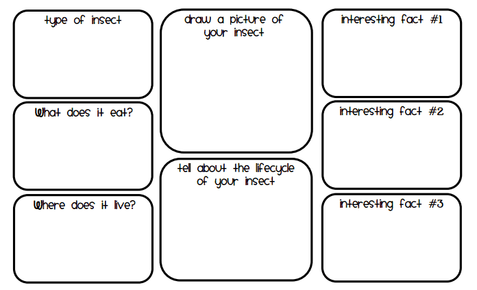 Animal Fact Graphic Organizer Pdf Animal Research border=