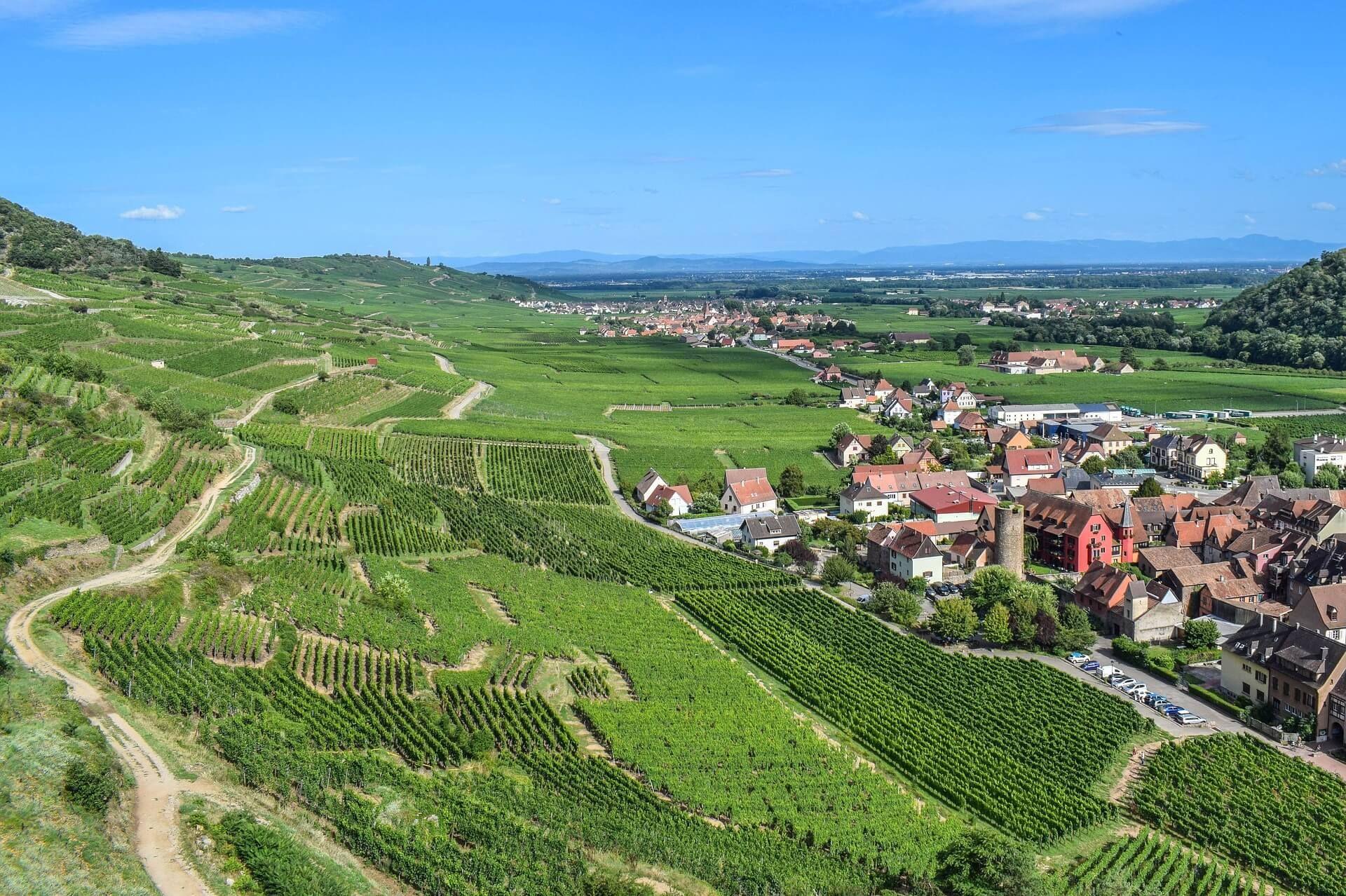 Route Des Vins D Alsace Les Etapes A Ne Pas Manquer Les Plus Belles Villes Alsace Tourisme Lieu Touristique