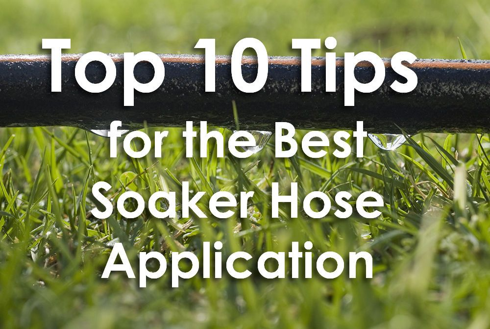 Top 10 Tips For The Best Soaker Hose Application Soaker Hose Irrigation Soaker Hose Soaker