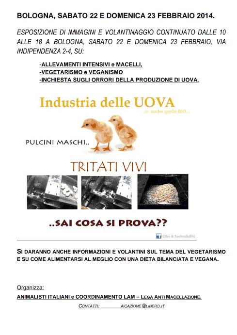 MovimentoLAM.LegaAntiMacellazione: Maratona di eventi vegan a Bologna.