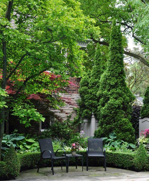Three Dogs In A Garden Beautiful Home Gardens Garden Design Shade Perennials