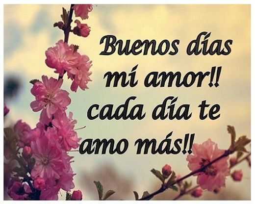 Frases De Buenos Dias Mi Amor Funny Cute Love Love Quotes Good