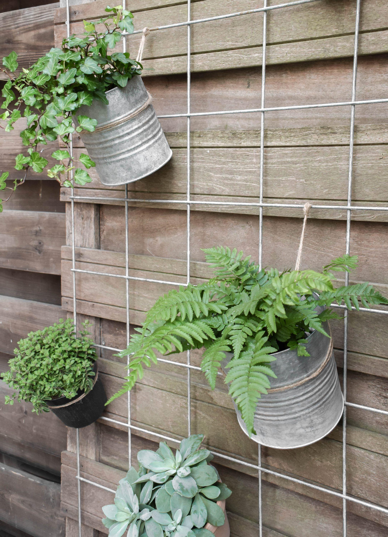 Bloembak Met Trellis Karwei.Plantenbak Van Betontegels Garden Tuin Ideeen Achtertuin Patio