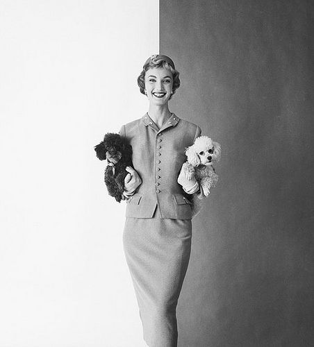 Two puppies. 1954
