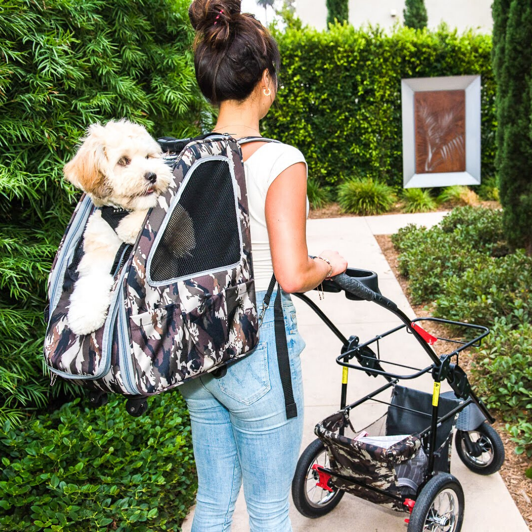 5in1 Pet Stroller Set with Pet Carrier and