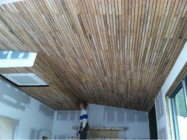 Ingebretson S Lath Ceiling