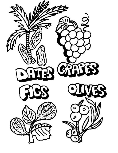 7 fruits for tu bshvat coloring pages | coloring page date fruit | Coloring pages, Coloring sheets ...
