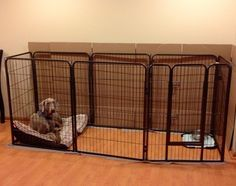 Blue Beagle Pet Exercise Pen, 36