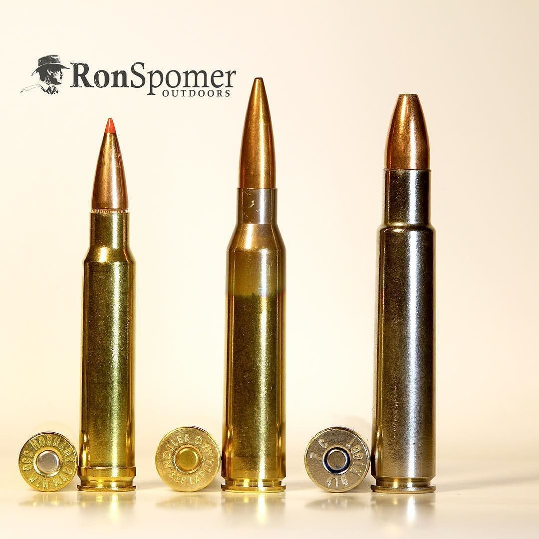 There are magnums and then there are MAGNUMS  338 Win Mag is