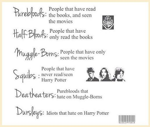 Which One Are You Pureblood For Me Harry Potter Fan Harry Potter Obsession Harry Potter Love