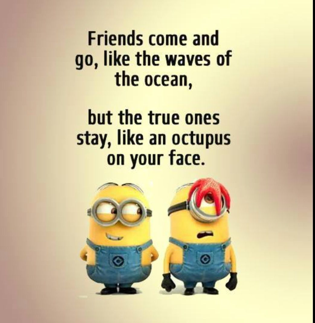 Pin By Mufi Fatħi On Minions Funny Minion Quotes Minions Funny Friendship Quotes