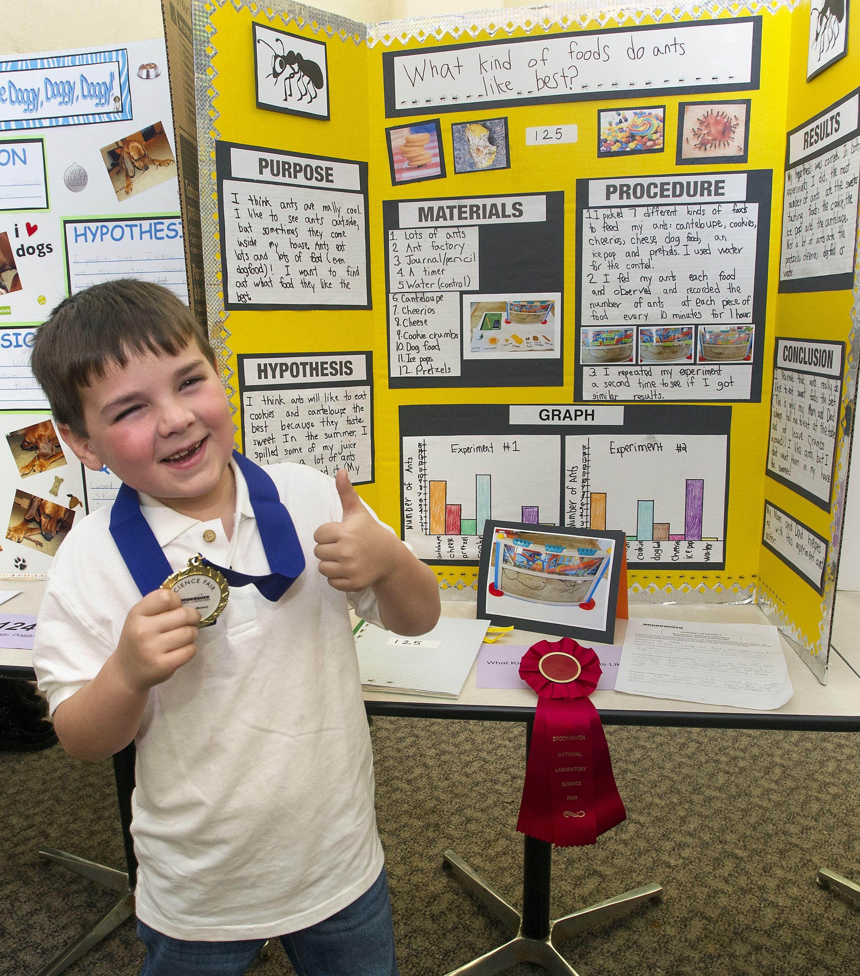 Ideas For Reading Fair Projects Kindergarten Science Fair