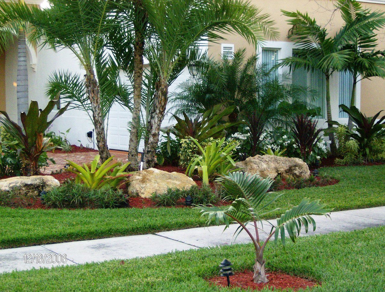 Large boulders around adonidia triple and tropical - Ideas para hacer un jardin ...