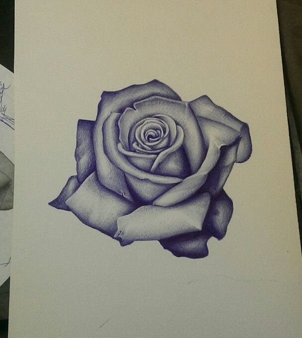 Realism Rose Artist Rudy Acosta Instagram Rudyta2 With Images