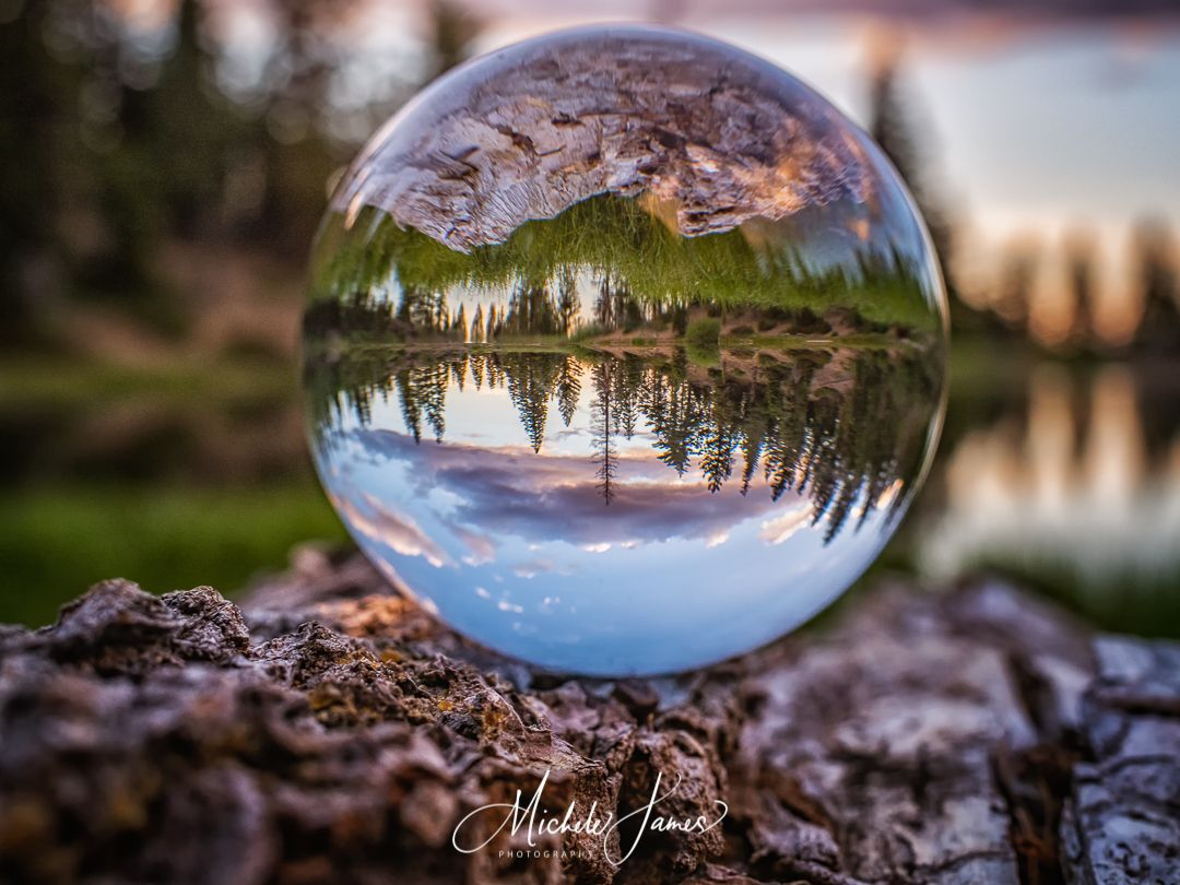 Sunset from Lilypad Lake is reflected in a lensball.  It's hard to tell what is the photograph and what is the reflection!  To see more of our work go to www.michelejamesphotography.com. . . #michelejamesphotography #explorewithmikeandmichele #refractionphotography #lilypadlake #lensball #reflection #clickmagazine @photographerfocus @shastacascade #onlyinnortherncalifornia #activenorcal #enjoydowntownredding #pnwcrew #realredding #california4fun