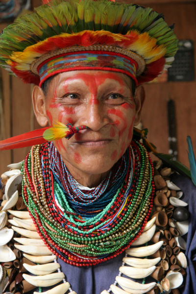 A shaman man from the Amazon Rainforest, wearing traditional dress.