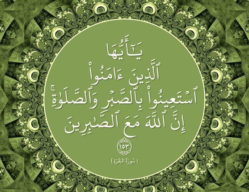 Pin By Sayed Yousef On Islam Quran Holy Quran Quran Verses Islam Quran