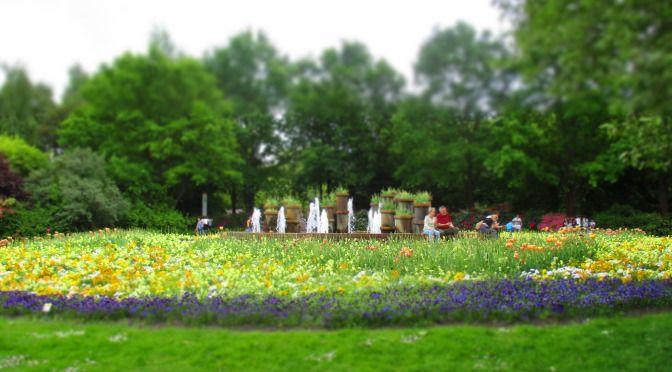 Gärten der Welt, Berlin https://murphyskiss.wordpress.com/2015/05/25/xii-zwolfter-stern-garten-der-welt-berlin/