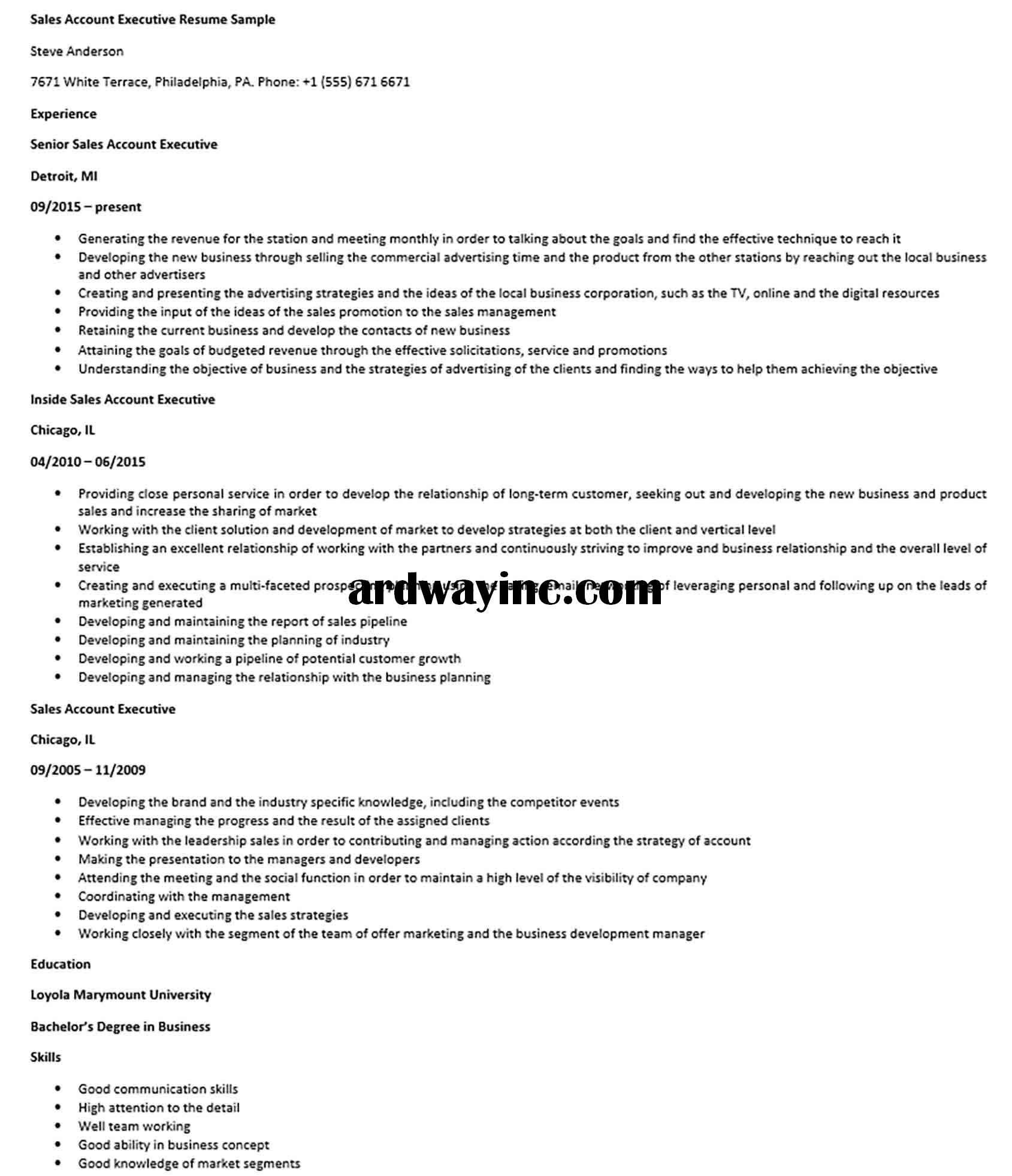 Sales Account Executive Resume Sample Executive Resume Account Executive Resume