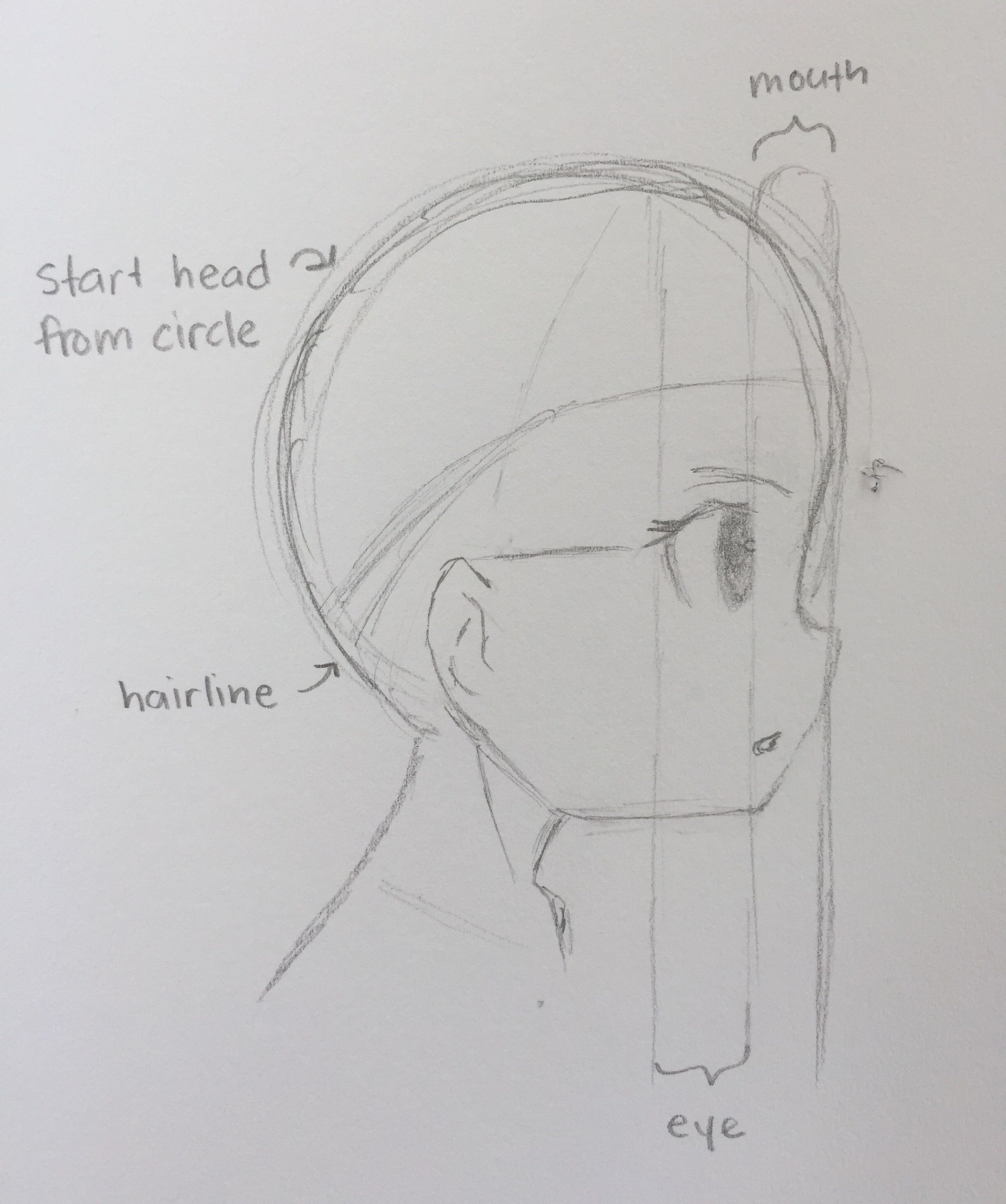 Anime Side Profile Tutorial Outline Art Drawing Base Profile Drawing