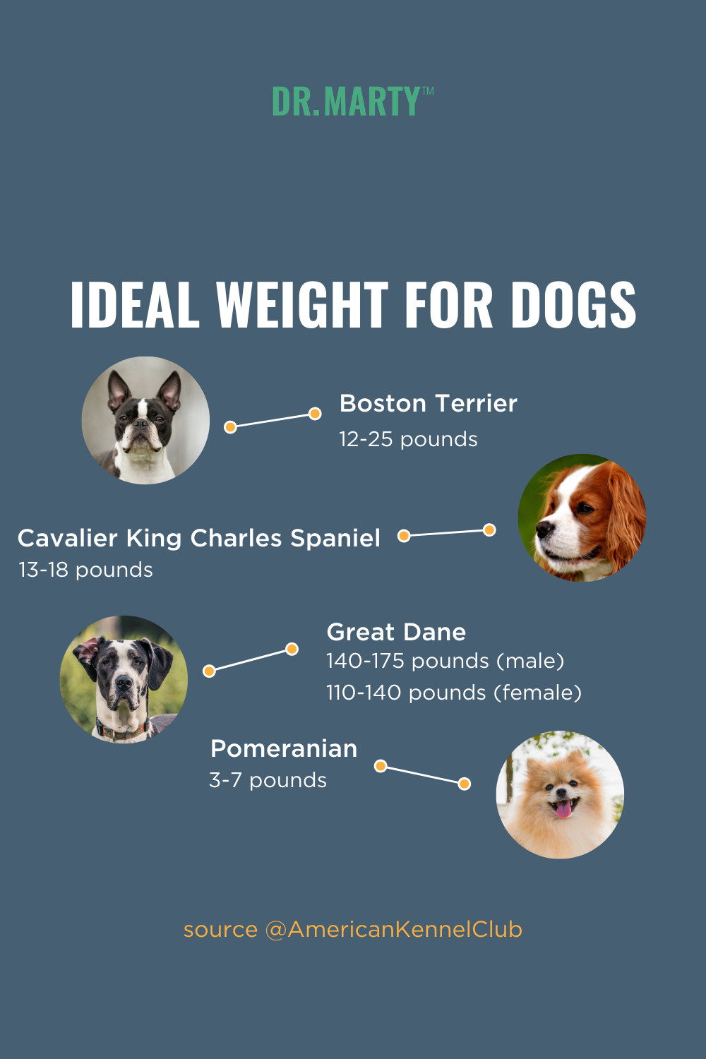 Ideal Weight For Dogs In 2020 Dog Weight Dog Health Ideal Weight