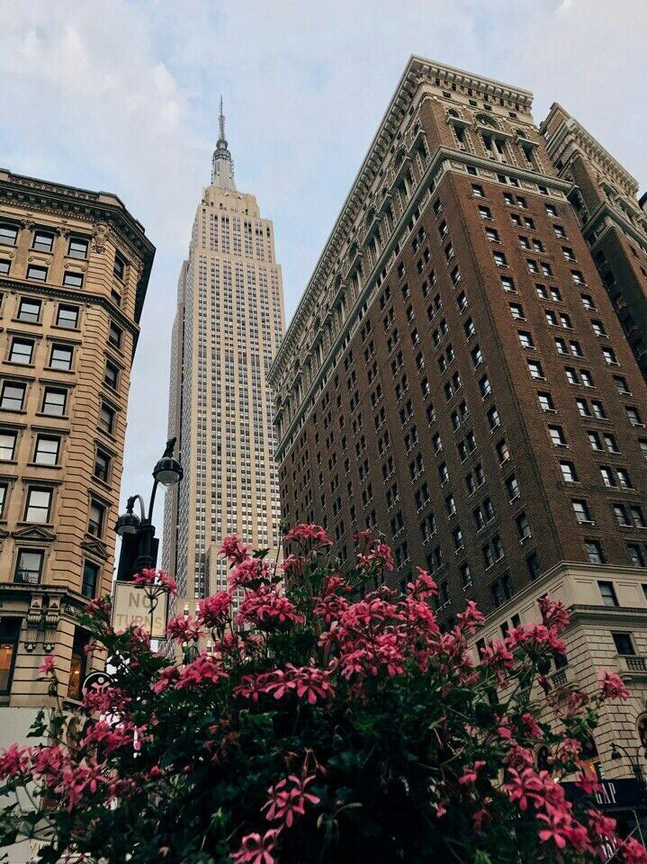 Pin by sofia on new york✨✨✨ Pinterest Empire state, City and