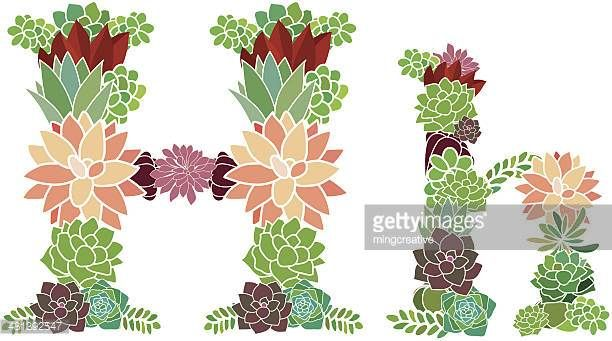 Succulent letter H and h
