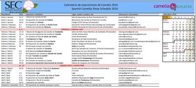 CORES DE CAMBADOS: I MOSTRA DE DIVULGACIÓN DA CAMELIA EN CAMBADOS
