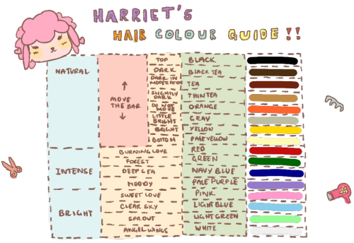 The 25 Best Shampoodle Hair Guide Ideas On Pinterest Acnl Animal Crossing And New Leaf
