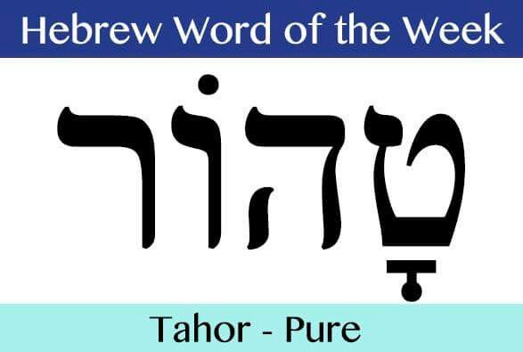 Image result for hebrew word tahor