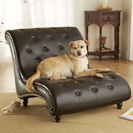 Tufted Trevi Doggy Chaise Lounger | Fancy Dog Beds at GlamourMutt.com u003cu003cu003c : pet chaise - Sectionals, Sofas & Couches