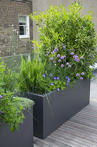 Brise-vue terrasse 25 idées sympas pour plus d`intimité Planters - comment construire sa maison soi meme