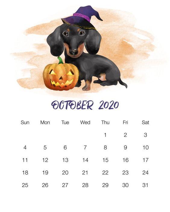 October Halloween 2020 Calendar Template Dog Halloween Cute October 2020 Calendar Ideas in 2020 | Dog