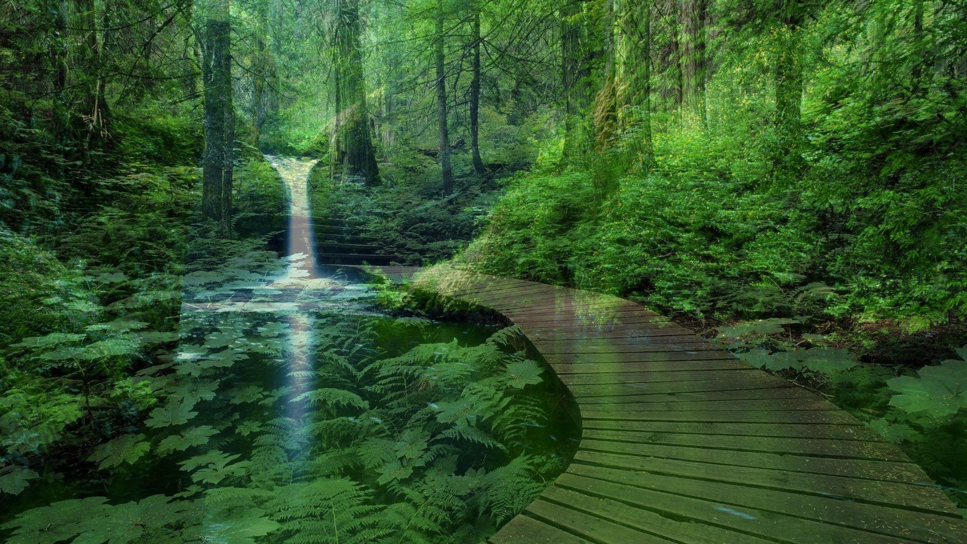 Pin By Joyce On Peaceful Landscapes Waterfall Scenery Landscape Wallpaper Landscape Trees