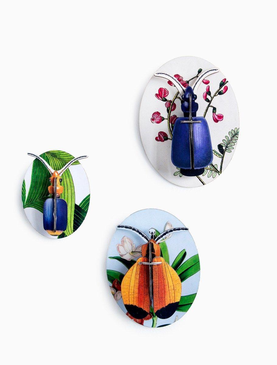 Studio Roof 3d Wanddecoratie Collectors Box Insects Vol 1 Angelart Kunst Zo Retro Print Wanddecoraties Decoratie