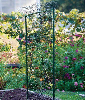 Epingle Sur Gardening Garden Structures