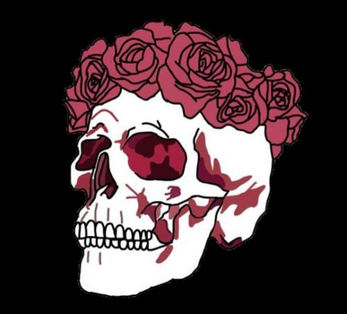 Skull Illustration Skull Sketch Skull Transparent Background Png Clipart Skull Art Skull Skull Illustration