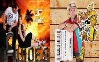 CD 2014 BAIXAR DO NOVO CANINANA DE FORRO