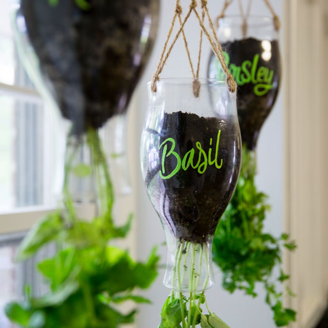 DIY Califia Hanging Planter | Hanging herbs, Herb planters and ...