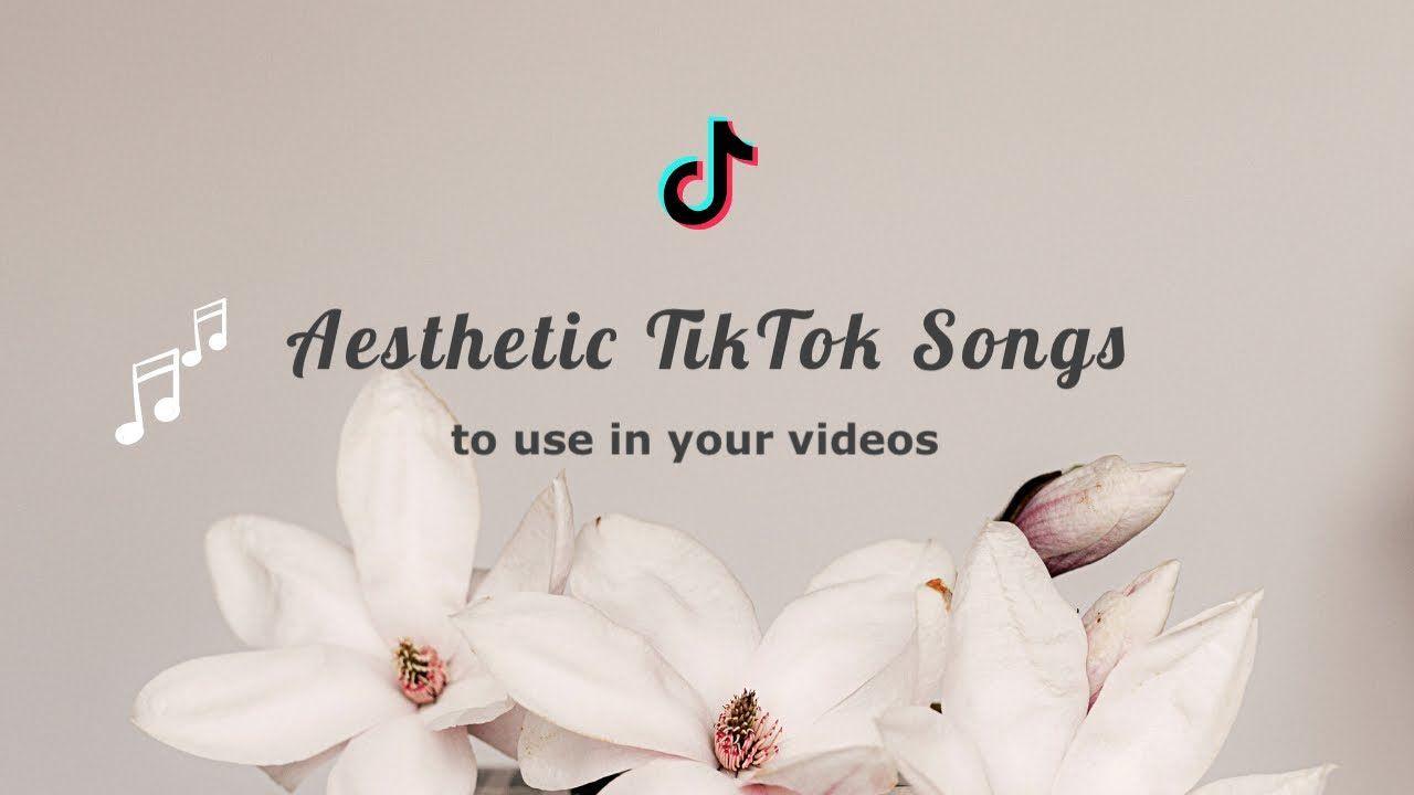 Aesthetic Songs On Tiktok 2020 Youtube Aesthetic Songs Songs Aesthetic